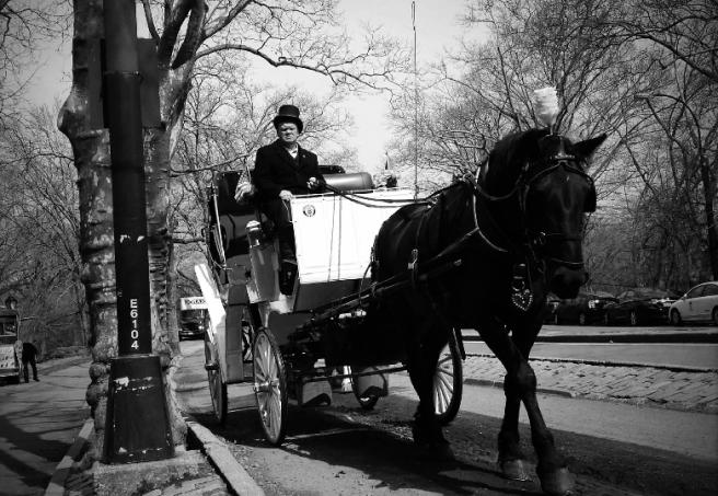 Rosita's Carriage shot