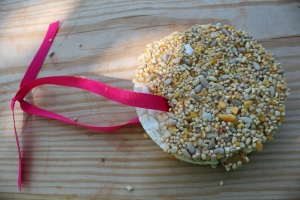 Rice Cake Bird Feeder