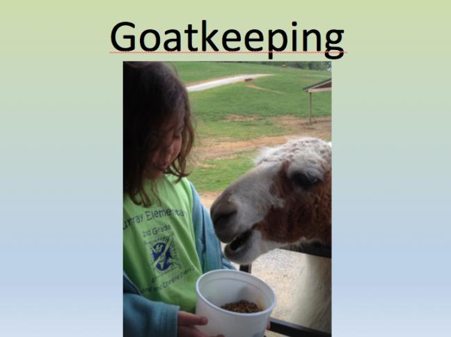 goatkeeping