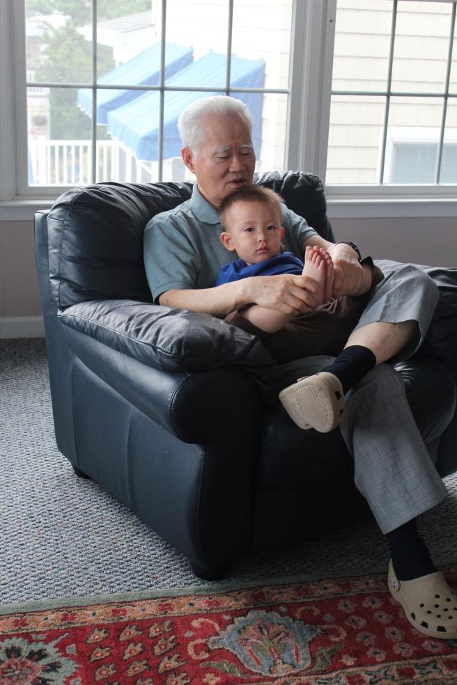 Dandelion loves Grandpa