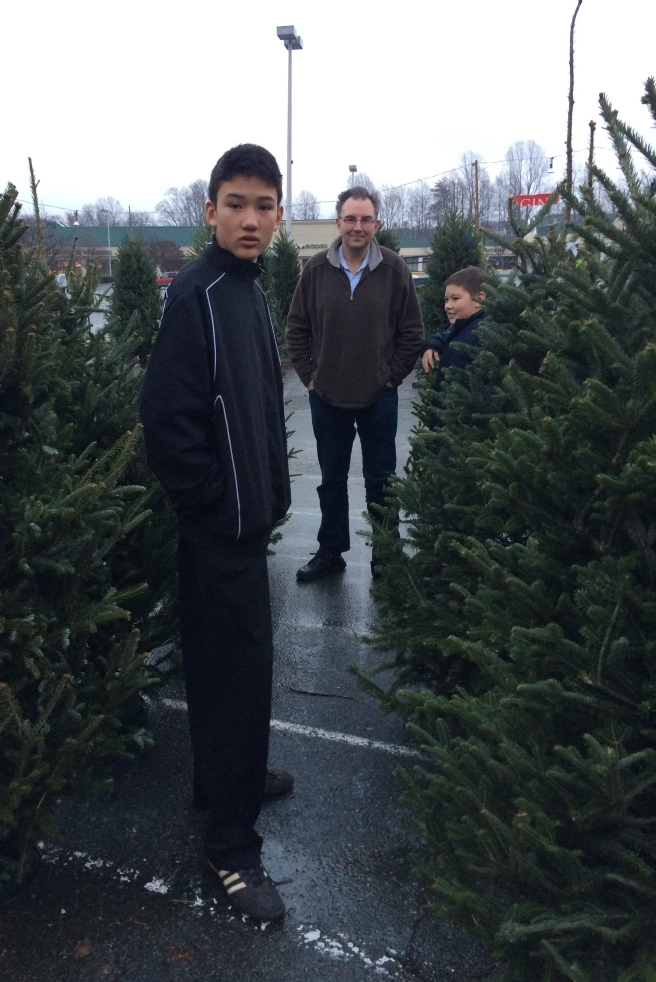 Picking out the Christmas tree